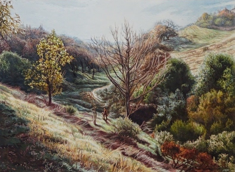 Kottinger Ranch Path-squashed